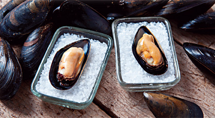 Iceberg Select Premium Mussels