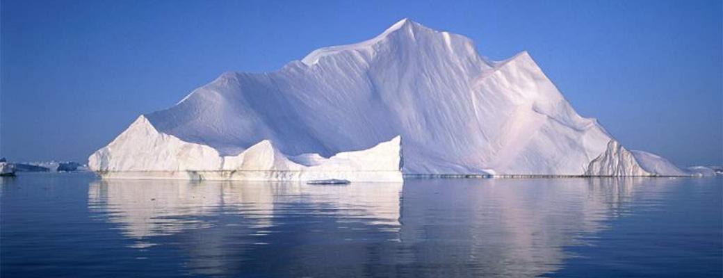 Les moules Iceberg Select™ sont les plus délicieuses de toutes